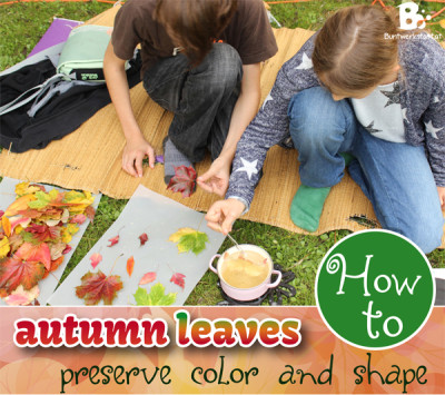 How to preserve Autumn Leaves